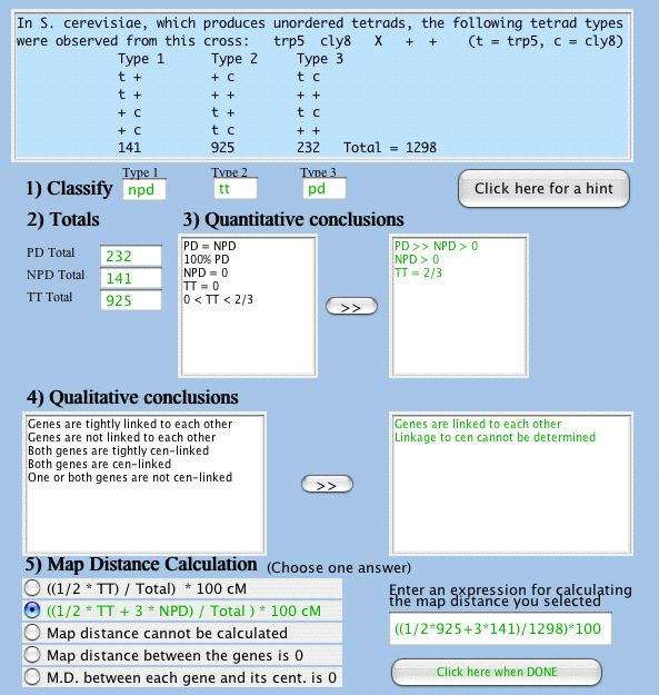 genetics cognitive tutor screenshot